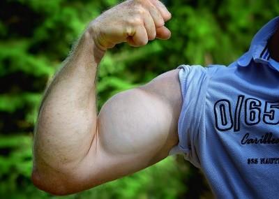 schnellere Zuwächse und prallere Muskeln dank Creatin Monohydrat